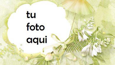 Marco Para Foto Tan Delicioso Amor Marcos 390x220 - Marco Para Foto Tan Delicioso Amor Marcos