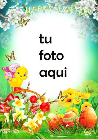 Marco Para Foto Tarjeta De Pascua Brillante Primavera Marcos - Marco Para Foto Tarjeta De Pascua Brillante Primavera Marcos