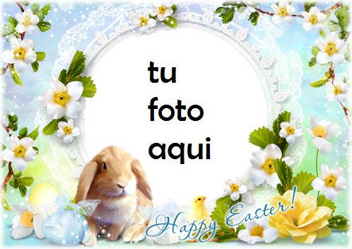 Marco Para Foto Ten Una Pascua Feliz Y Lupulada Primavera Marcos - Marco Para Foto Ten Una Pascua Feliz Y Lupulada Primavera Marcos