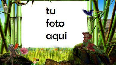 Marco Para Foto Tierra De Hadas Mágicas Primavera Marcos 390x220 - Marco Para Foto Tierra De Hadas Mágicas Primavera Marcos