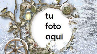 Photo of Marco Para Foto Todo Alrededor En La Nieve Invierno Marcos