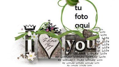 Marco Para Foto Vacaciones Encantadoras Año Nuevo Amor Marcos 390x220 - Marco Para Foto Vacaciones Encantadoras Año Nuevo Amor Marcos