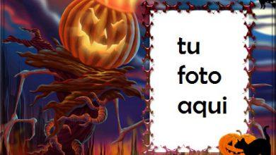 marco para foto bruja de halloween está descansando halloween marcos 390x220 - marco para foto bruja de halloween está descansando halloween marcos