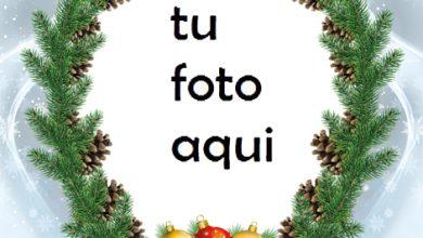Marco Para Foto Navidad Nevada Navidad Marcos 390x220 - Marco Para Foto Navidad Nevada Navidad Marcos