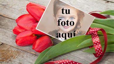 Photo of Un ramo de rosas para San Valentín Foto Marcos