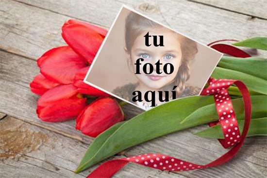 Un ramo de rosas para San Valentín Foto Marcos - Un ramo de rosas para San Valentín Foto Marcos