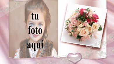 La portada de alegría y flores. foto marcos 390x220 - La portada de alegría y flores. foto marcos