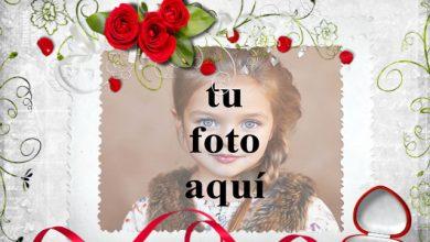 Photo of Libro de amor de portada blanca foto marcos