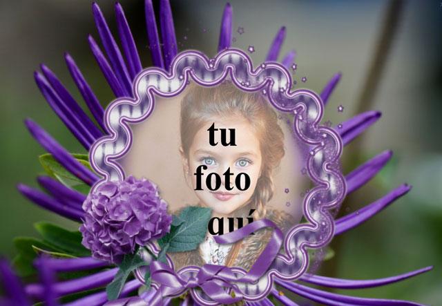 Marco De Rosas Violetas Con Flor Foto Marcos - Marco De Rosas Violetas Con Flor Foto Marcos