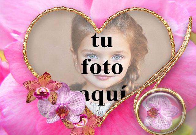 Marco de corazón de flores rosadas foto marcos - Marco de corazón de flores rosadas foto marcos