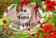 Parque tranquilo amor foto marcos 220x150 - Parque tranquilo amor foto marcos