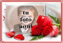 Símbolo de flores rojas del amor foto marcos 220x150 - Símbolo de flores rojas del amor foto marcos