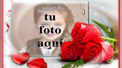 Photo of Símbolo de flores rojas del amor foto marcos