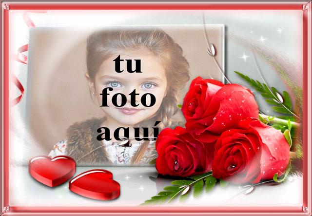Símbolo de flores rojas del amor foto marcos - Símbolo de flores rojas del amor foto marcos