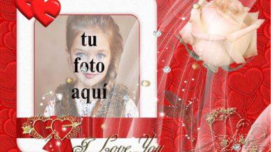 Tarjeta de amor real foto marcos 390x220 - Tarjeta de amor real foto marcos