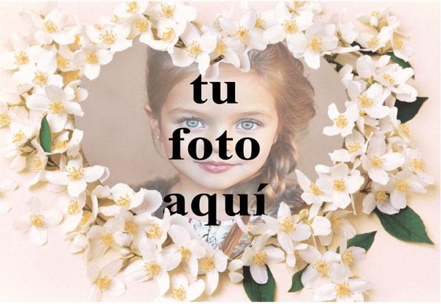 Un collar de flores blancas foto marcos - Un collar de flores blancas foto marcos