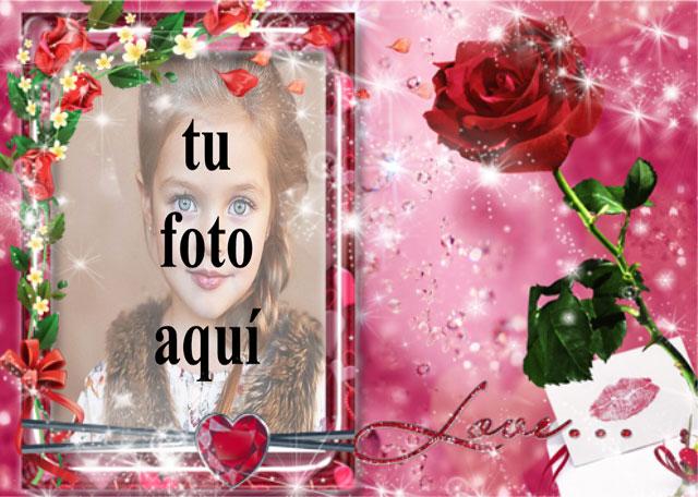 Una rosa roja amor foto marcos - Una rosa roja amor foto marcos
