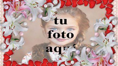 Photo of marco de flores blancas y corazones rojos foto marcos