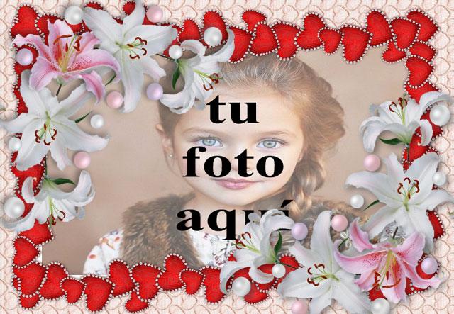 marco de flores blancas y corazones rojos foto marcos - marco de flores blancas y corazones rojos foto marcos