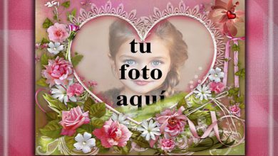 Photo of mi corazón ama el jardín foto marcos