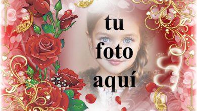 mi corazon felicidad y alegria foto marcos 390x220 - mi corazon felicidad y alegria foto marcos