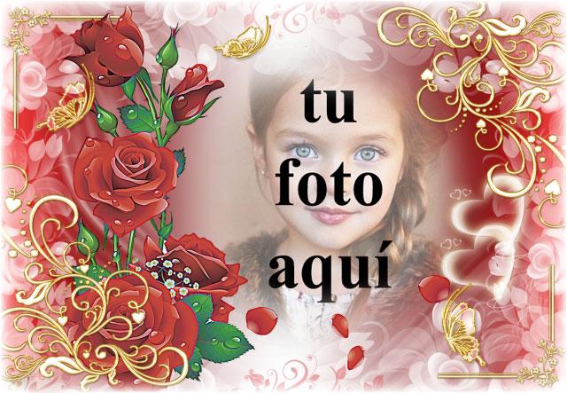 mi corazon felicidad y alegria foto marcos - mi corazon felicidad y alegria foto marcos