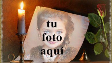 tu iluminas mi vida foto marcos 390x220 - tu iluminas mi vida foto marcos