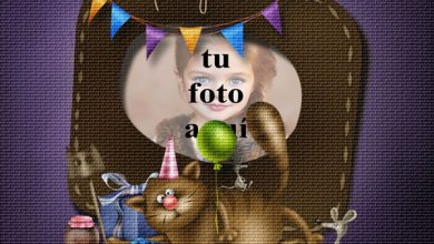 Photo of Fiesta De Cumpleaños Divertida Del Gato Marco Foto