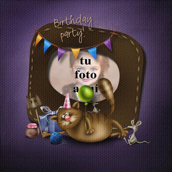 Fiesta De Cumpleaños Divertida Del Gato Marco Foto - Fiesta De Cumpleaños Divertida Del Gato Marco Foto