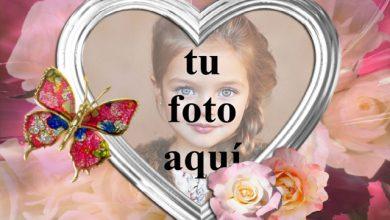 Mariposa Joya con marco de fotos corazón blanco 390x220 - Mariposa Joya con marco de fotos corazón blanco