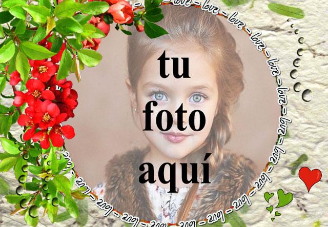 Te amo con marco de fotos de rosas rojas - Te amo con marco de fotos de rosas rojas