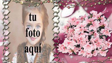 Photo of clasificado en marco de fotos morado decorado con flores