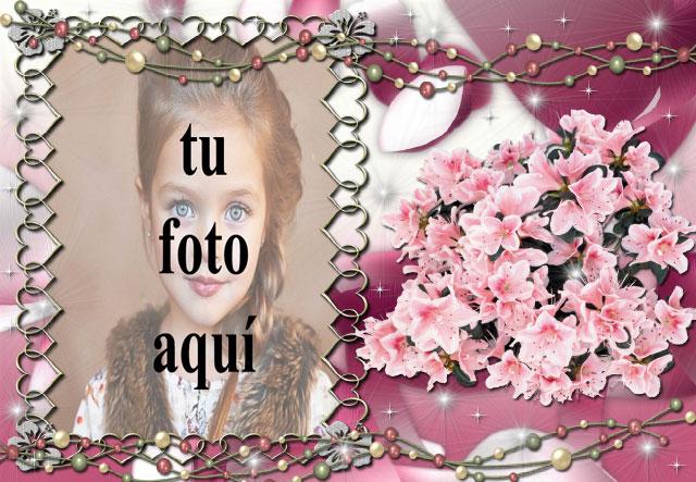 clasificado en marco de fotos morado decorado con flores - clasificado en marco de fotos morado decorado con flores
