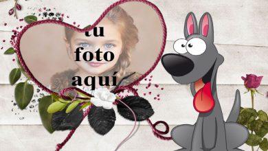 el marco romantico de la foto del perrito 390x220 - el marco romántico de la foto del perrito