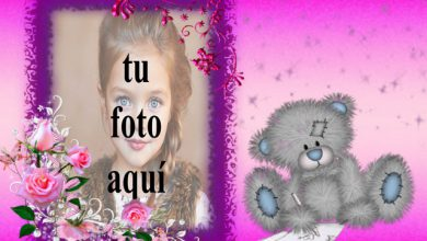 Photo of el romántico marco de fotos de juguete de oso de peluche