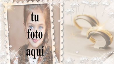 Photo of marco de fotos de boda con pequeñas rosas blancas y anillos dorados