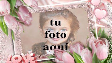 Photo of marco de fotos rosa decorado hermosas flores rosadas