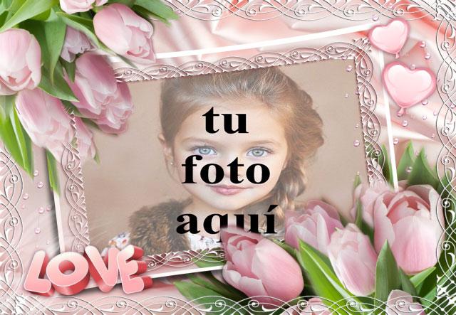 marco de fotos rosa decorado hermosas flores rosadas - marco de fotos rosa decorado hermosas flores rosadas