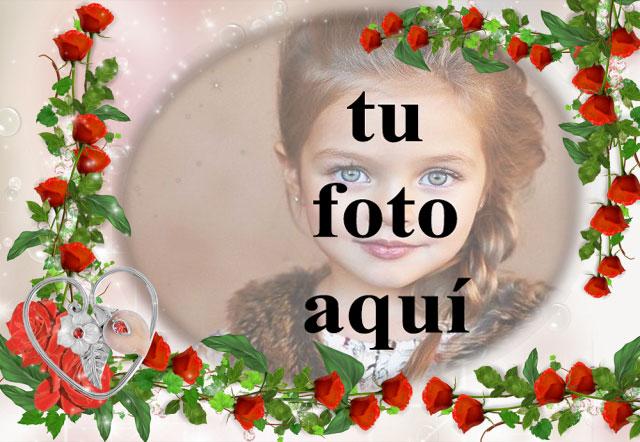 romantico marco de fotos de flores rojas decorado con amor - romántico marco de fotos de flores rojas decorado con amor