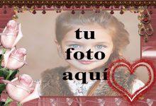 rosas rosadas con marco de fotos de corazón rojo 220x150 - rosas rosadas con marco de fotos de corazón rojo