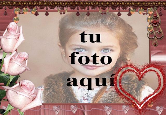 rosas rosadas con marco de fotos de corazón rojo - rosas rosadas con marco de fotos de corazón rojo