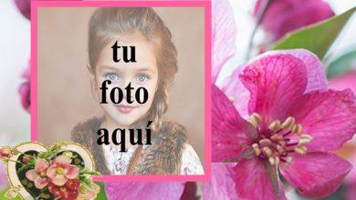 Photo of Marco de fotos de corazón rosa muy romántica