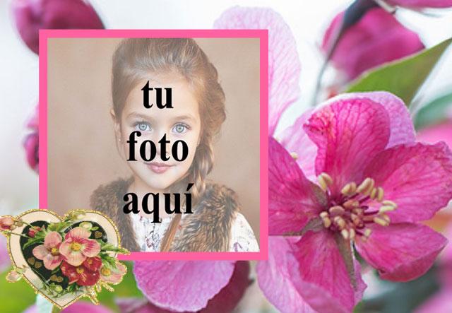 Marco de fotos de corazon rosa muy romantica - Marco de fotos de corazón rosa muy romántica