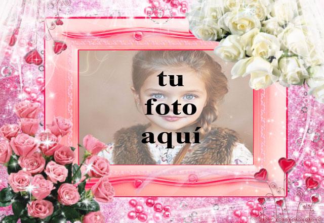 Marco de fotos de rosas rosadas y rosas blancas con fondo muy romantico - Marco de fotos de rosas rosadas y rosas blancas con fondo muy romántico