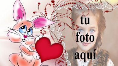 Photo of marco de fotos de conejito de amor con marco decorativo
