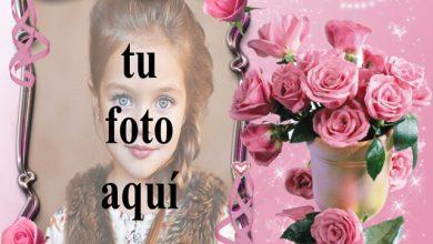 pequeno ramo de rosas rosadas marco de fotos romantico 390x220 - pequeño ramo de rosas rosadas marco de fotos romántico