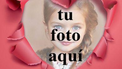 Celebremos el amor en mi marco de fotos en forma de corazon 390x220 - Celebremos el amor en mi marco de fotos en forma de corazón
