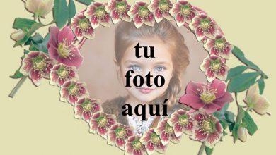 Photo of corazón romántico con marco de fotos de rosas rojas