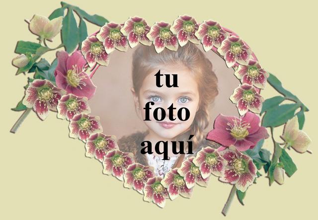 corazon romantico con marco de fotos de rosas rojas - corazón romántico con marco de fotos de rosas rojas