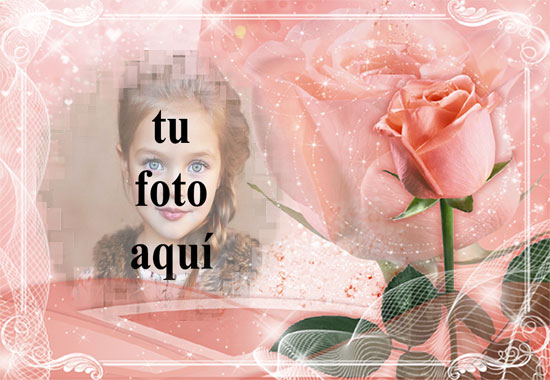 marco romantico rosa con marco de fotos rosa amor rosa - marco romántico rosa con marco de fotos rosa amor rosa